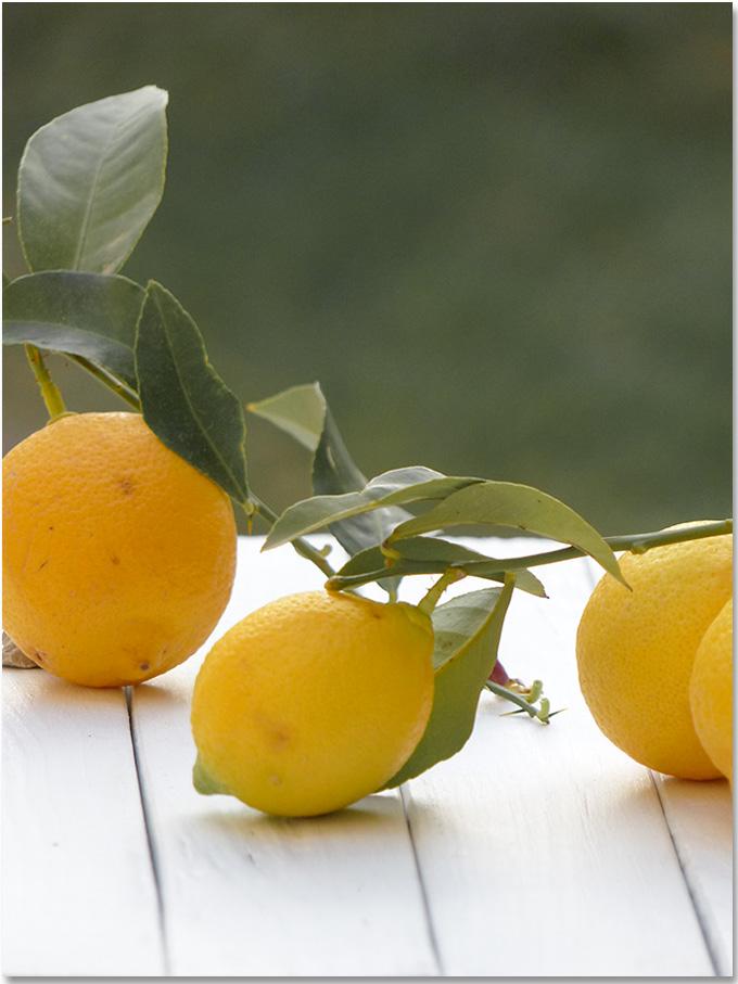 Le citron et ses vertues