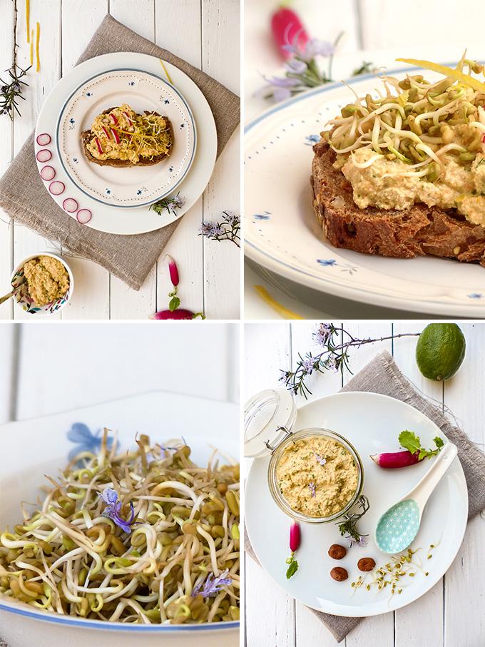 Tartinade-au-tofu,-citron-et-fenugrec_montage