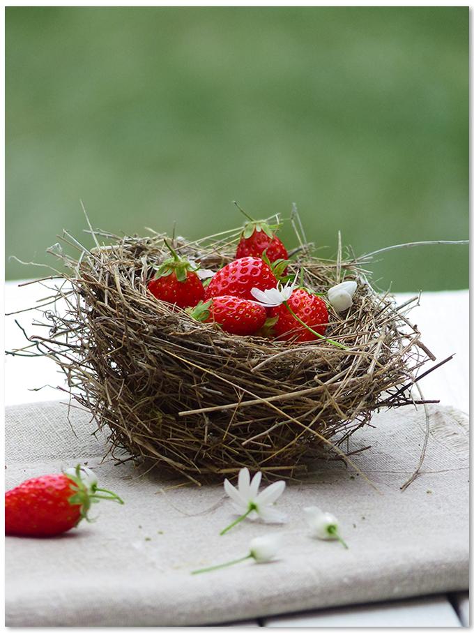 Nutrition fraise