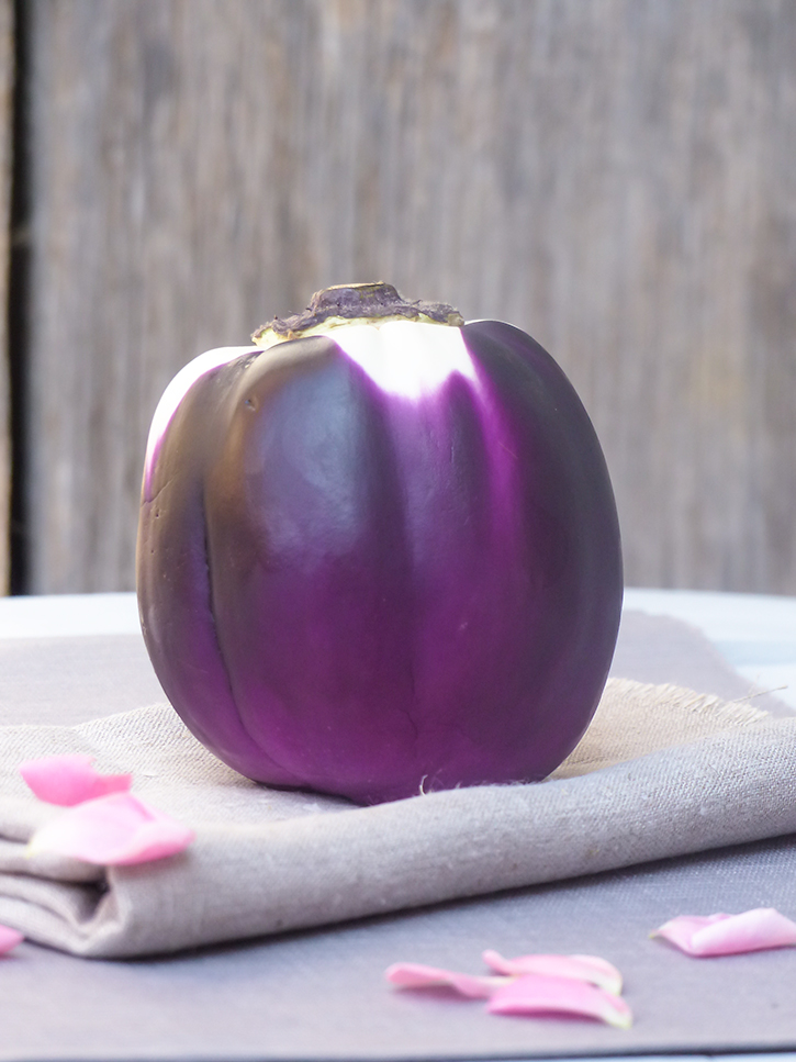 Aubergine violette ronde