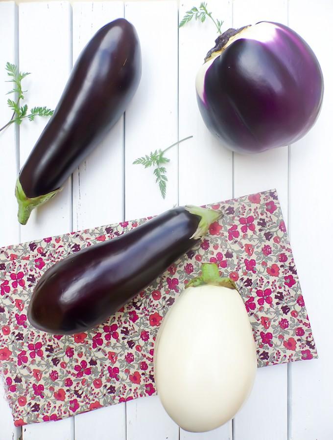 L'aubergine (Solanum melongena L.)