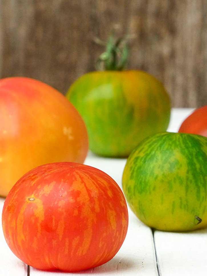 La tomate (Lycopersicon esculentum)