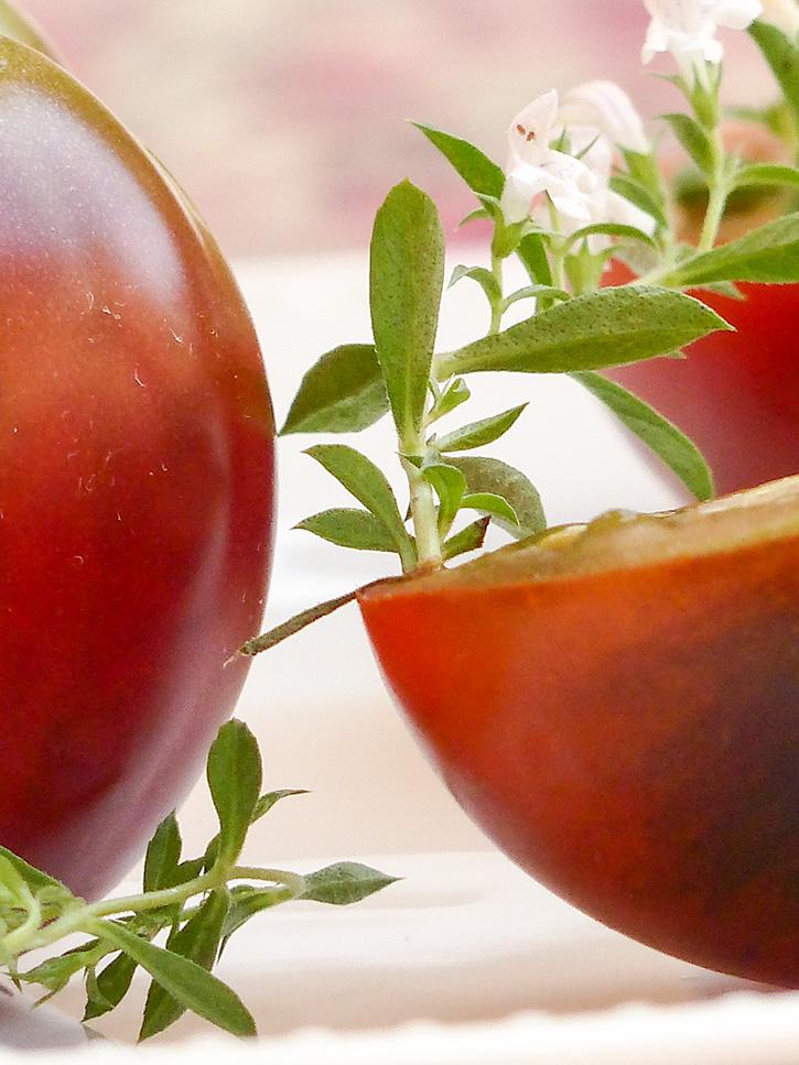 La tomate, ses bienfaits et son histoire (Lycopersicon esculentum)