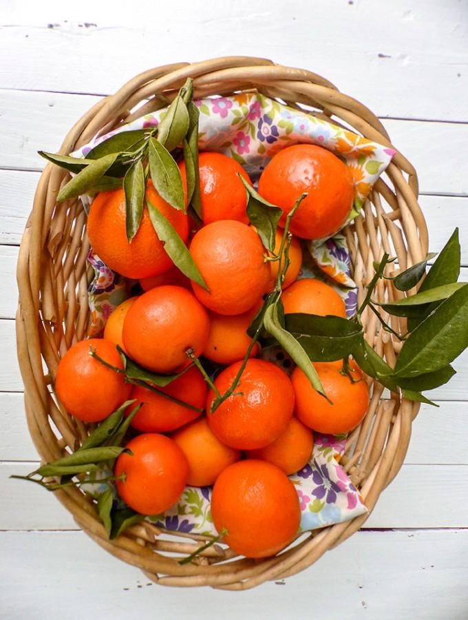 La clémentine (Citrus clementina)