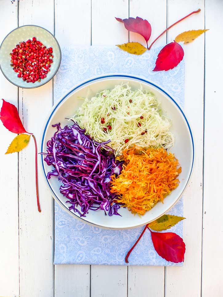Salade Coleslaw aux deux choux