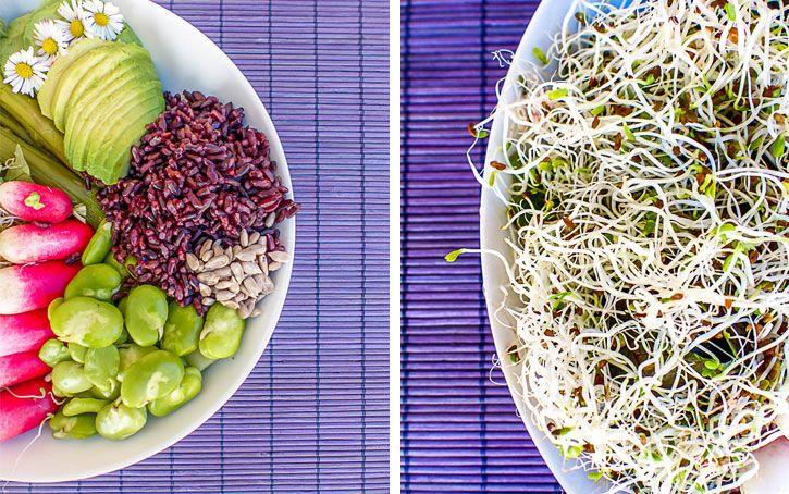 buddha bowl super aliments