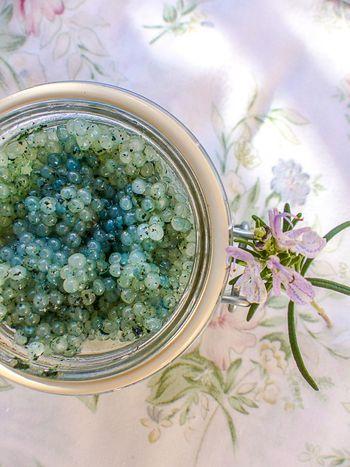 Caviar végétal accueil