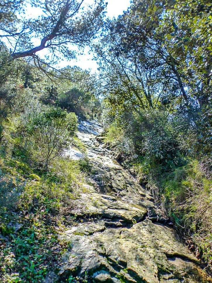 Lit d'un ruisseau méditerrannée